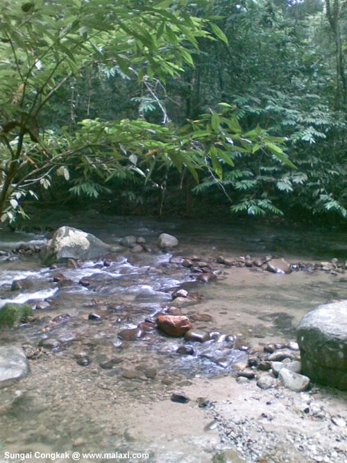 Hutan Lipur Sungat Langat At Hulu Langat Selangor Malaysia