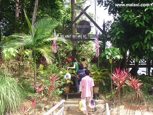 Taman Herba Tasik Kenyir